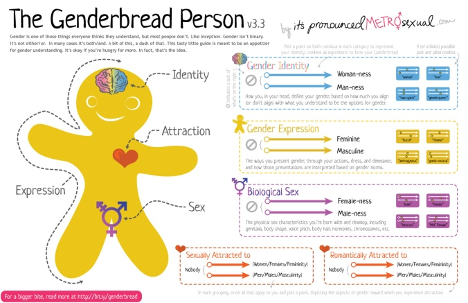 Genderbread-Person-3